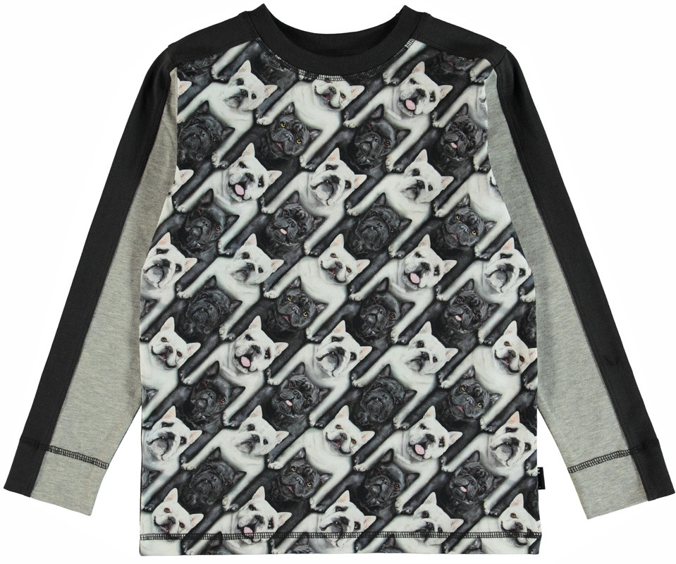 7f08a81c2f3 Molo Raso shirt English Bulldog - PaRit kinderkleding- online ...